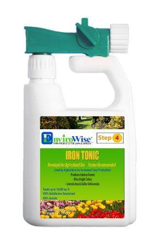 Professor Green 335 Iron Tonic Foliar Sprayer, 1-Quart by Professor Green. $31.77. Increases the health and vitality of all plants and turf. Used in the production of field crops. Produces intense greens. Complex blend of ingredients. Promotes ultra bright colors. Professor Green products have been formulated and used by agriculture and sports facility managers (Golf Course Industry) for the past 35-year. These products have not been available to the home gardene...