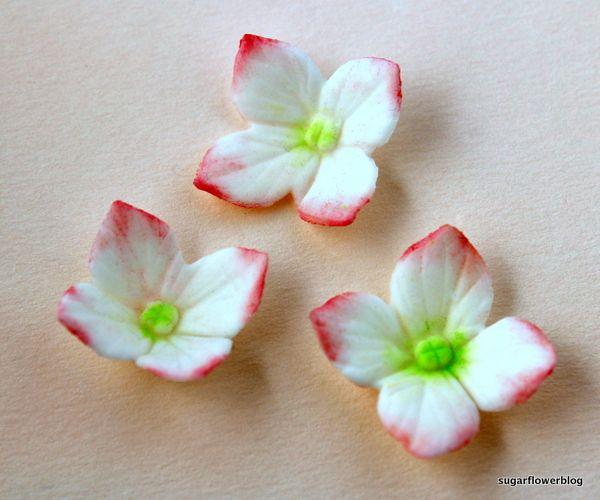 Sådan laver du en hortensia i fondant eller gum paste