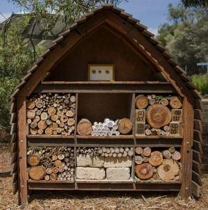 The Australian Native Bee Hotel at the Botanic Gardens.