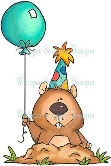 Birthday Gopher