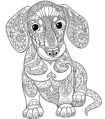 Adult Colouring Pages On The Zen Color App Its A Free IOS Sausage DogsAdult Coloring Book