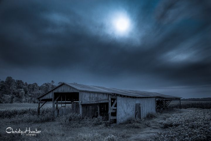 Old cattle barn in Ripley, TN.  Another edit for my Blue Series.