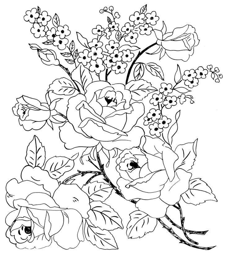 Картинки цветов раскраски красивые