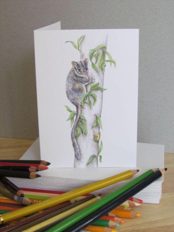 Leadbeater's Possum - Australian wildlife art greeting card