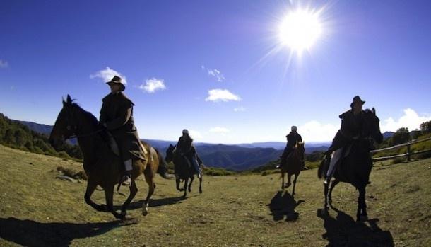 Horseriding on Mt Buller