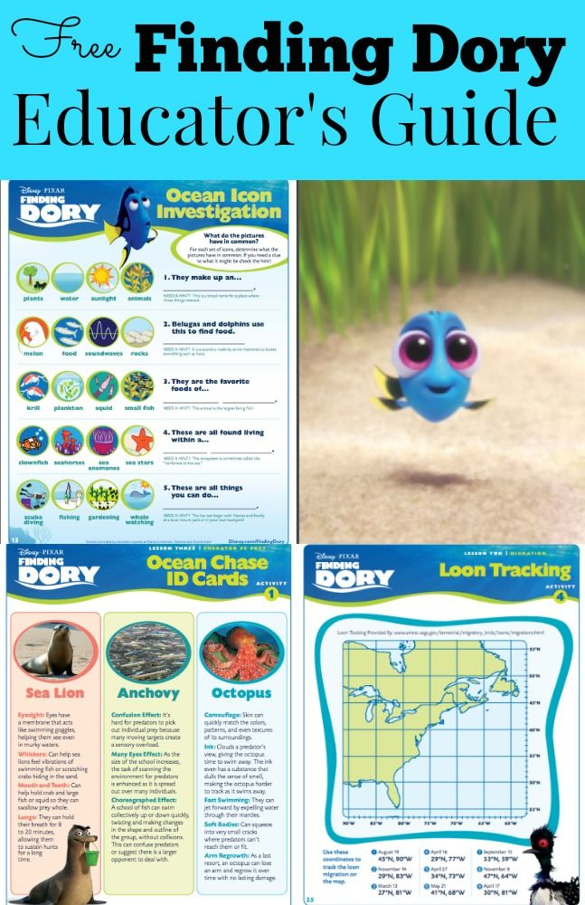 Educator's Guide for Disney Pixar's Finding Dory movie. Packed with printables for the classroom, student activities, scientific facts, conservation, ocean lesson plans and much more!