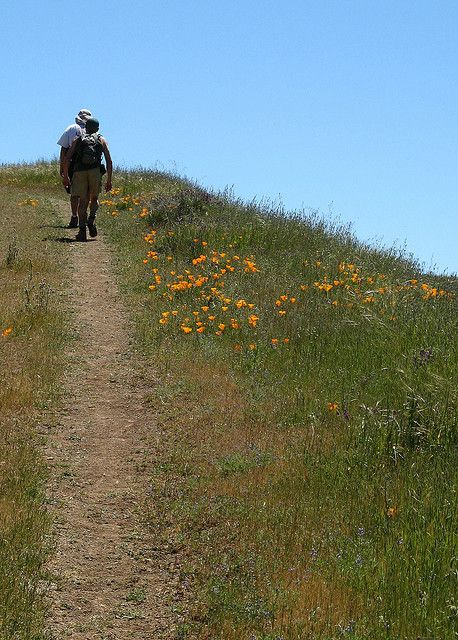 Hiking near Los Gatos, California