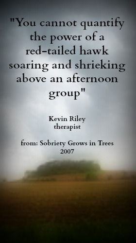 Parent Empowerment Handbook 22ndEdition Part 3~ Wilderness Therapy & Outdoor Adventure...Sobriety Grows in Trees http://www.amazon.com/Wilderness-Adventure-Empowerment-Handbook-ebook/dp/B00EOY27AE/ref=sr_1_5?ie=UTF8&qid=1377800592&sr=8-5&keywords=Lon+Woodbury