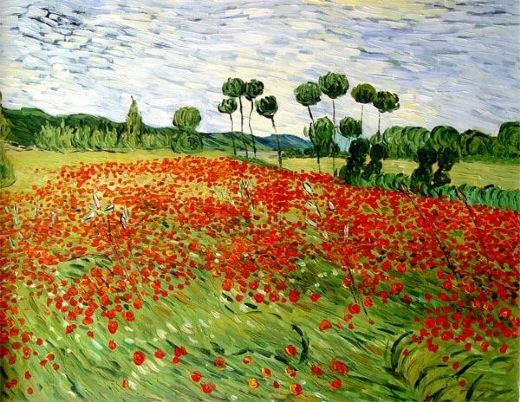 Field of Poppies, Auvers-Sur-Oise, 1890. Vincent van Gogh #art #painting #vincentvangogh