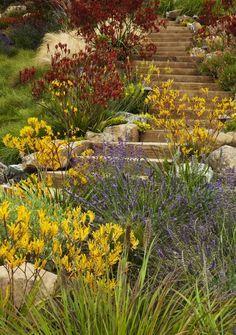 Artera Landscape: Finalist in Gardenista's Considered Design Awards