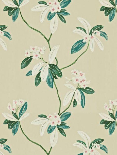 Sanderson Oleander Wallpaper - 212131