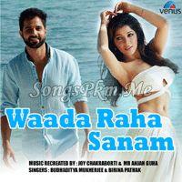 Waada Raha Sanam - Budhaditya Hindi Pop Mp3 Songs   Songspkm.me