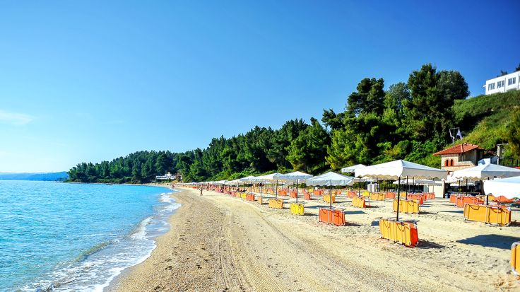 Beautiful, pristine beach! Crystal clear waters, golden sand. This is Alexander the Great Beach Hotel in Kryopigi, Greece  - book your dream holiday at www.paphotels.com