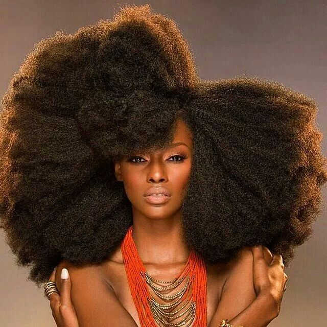 256 best The Beauty of African American Hair images on Pinterest ...