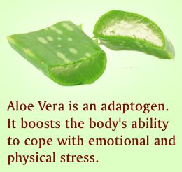 Aloe vera juice benefits. Available from www.katedixon.myforever.biz