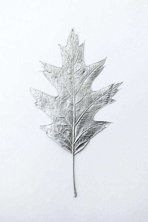 Blätter Ich hatte eine Lichtung und bin auf einige Blätter gestoßen, die ich letztes Jahr gepresst habe. Ich habe sie mit Silberfarbe besprüht und sie sehen toll aus. Sie…