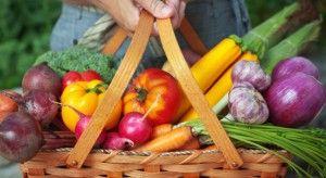 Anche oggi parleremo di tendenze: il Raw Food, ovvero il cibo crudo concepito come scelta di vita e non solo come preferenza di gusto. Un movimento che nasce negli Stati Uniti ma che si basa su abitudini non proprio recentissime, che risalgono alla notte dei tempi, quando l'uomo si cibava degli alimenti così come madre natura glieli offriva. Leggi il Post ---> http://blog.ilpikkio.it/tendenze-in-cucina-raw-food/
