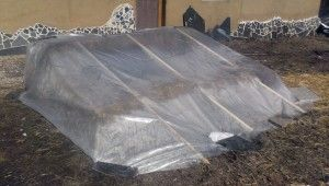 Hay and straw bale cold frame mini-greenhouse
