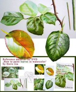 Online Lesson - How to paint leaves in watercolor, realistic leaves, autumn leaves, rose leaves
