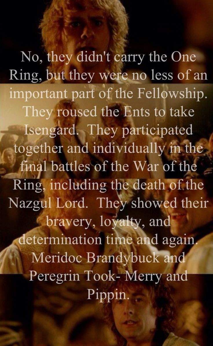So true. I don't like it when people say they were just the stupid ones in the fellowship. They might not have had the most important roles but they still played important parts.