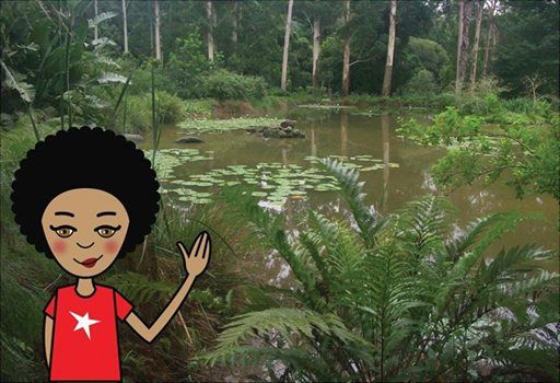 Today we chilled out in the KZN National Botanical Garden (PMB). After all the educational stuff it was fun to just lie on the grass listening to music. I wish botanical gardens had animals though...I'd dig to see the big five! #zibu #heritagemonth #southafrica http://tinyurl.com/lvot5zq
