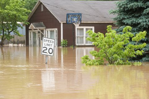 If you're like most homeowners, you probably wonder if you really need flood insurance. Spoiler alert: Yes, you probably do!
