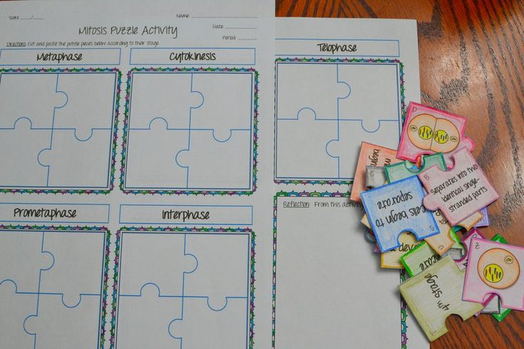 Mitosis Puzzle Activity   Experiments   Mitosis, Meiosis ...