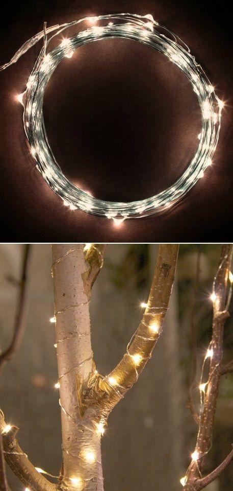 Alternative Gardning: LED string lights warm white