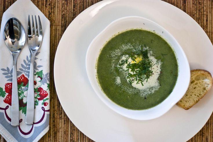 Brennesle er både rik på jern, A-vitamin og C-vitamin. Dessuten smaker den supert i suppe. (Foto: Frances/flickr. Creative Commons-lisens)