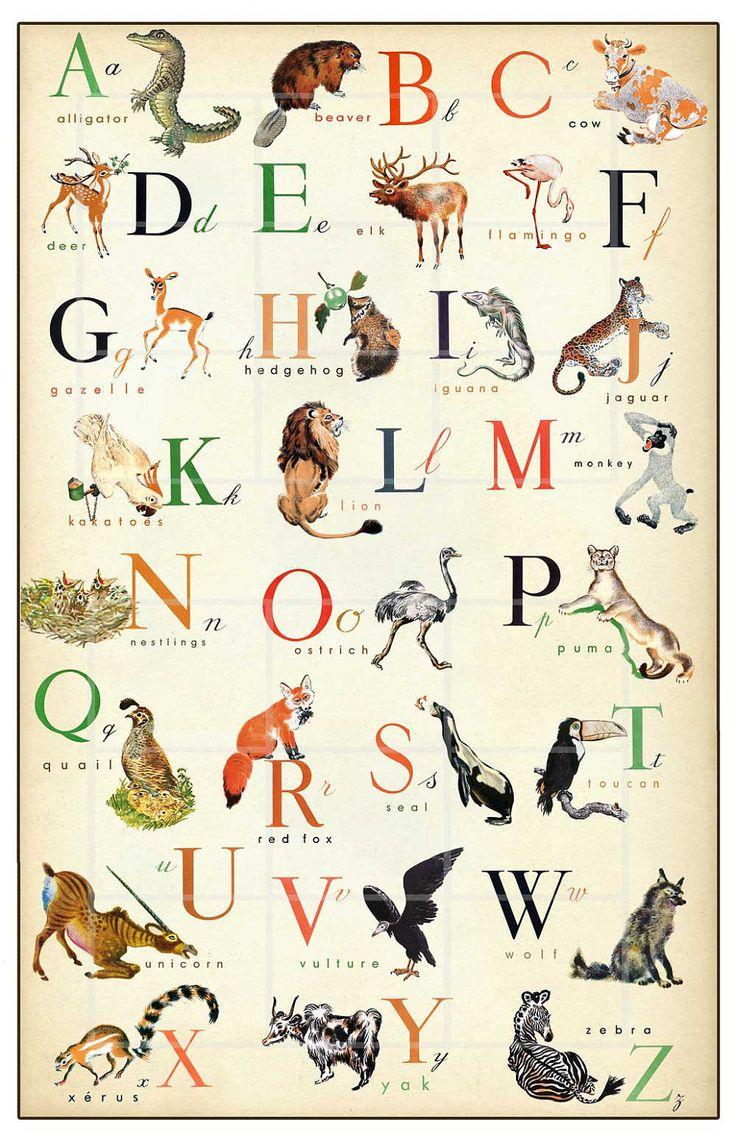 Vintage Animal Alphabet Print 11 X 17 Inch Hopefully