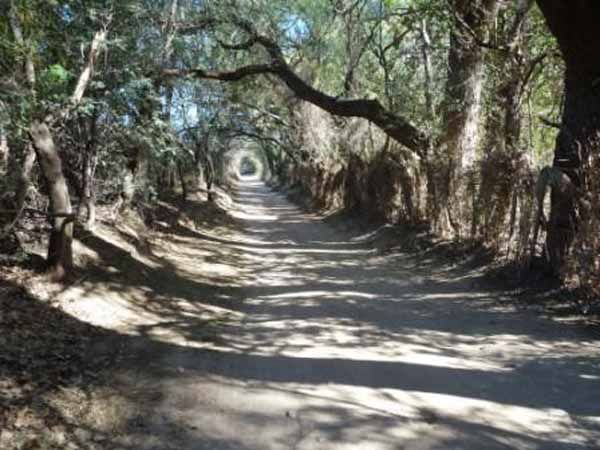 San Marcos Sierras late al compás de tus sentidos - Blogs lanacion.com