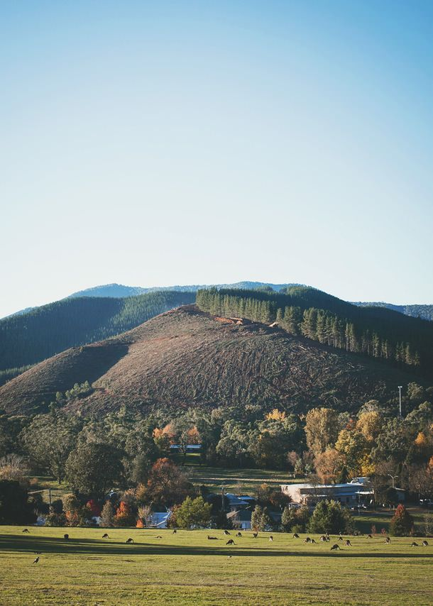 High Country Harvest at Bright - North East Victoria (A Table For Two)