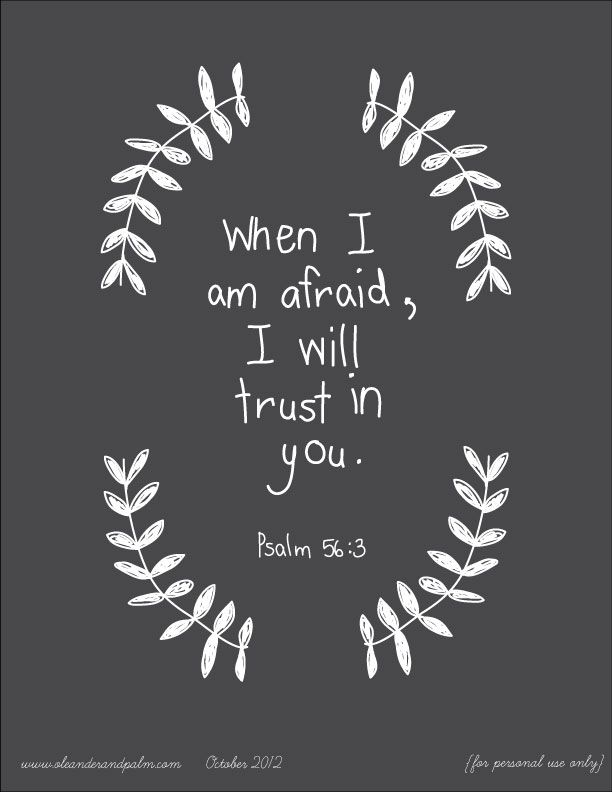"""When I am afraid,  I will put my trust in You.  In God, whose word I praise,  In God I have put my trust;  I shall not be afraid.  What can mere man do to me?""  Psalm 56:3-4"