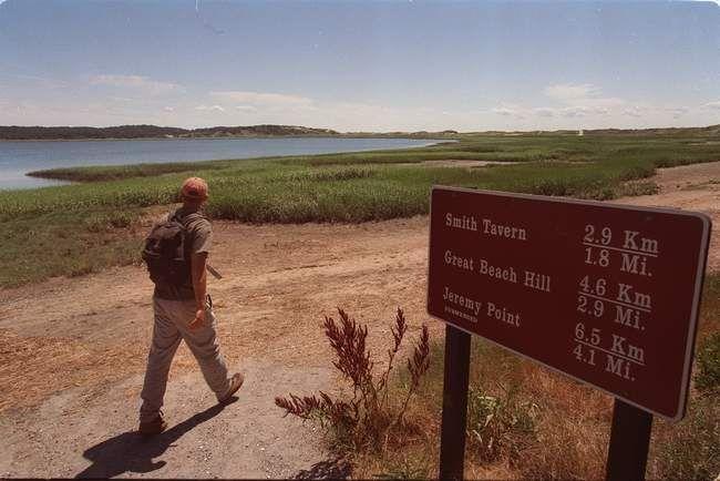 Cape Cod Top 10: hiking spots - Cape Cod Online
