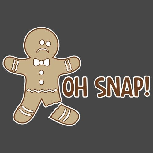 17 Best images about Funny Christmas on Pinterest | Christmas ...