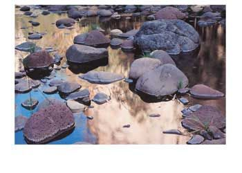 Creek Bed Discovery Playmat Australian Geographic. This beautiful playmat depicts a peaceful creek bed.