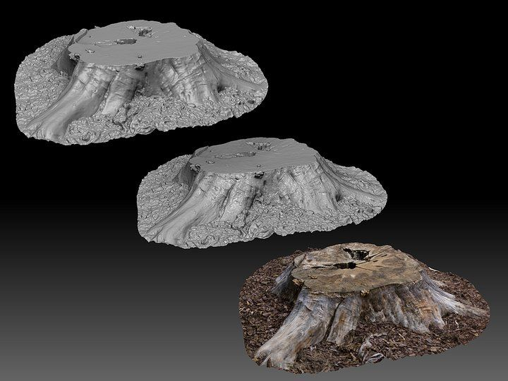Photogrammetry - Using ZBrush with Photofly Models for Real-time (Joseph Drust )