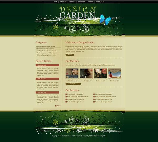Experts in Designing Functional and Affordable Websites