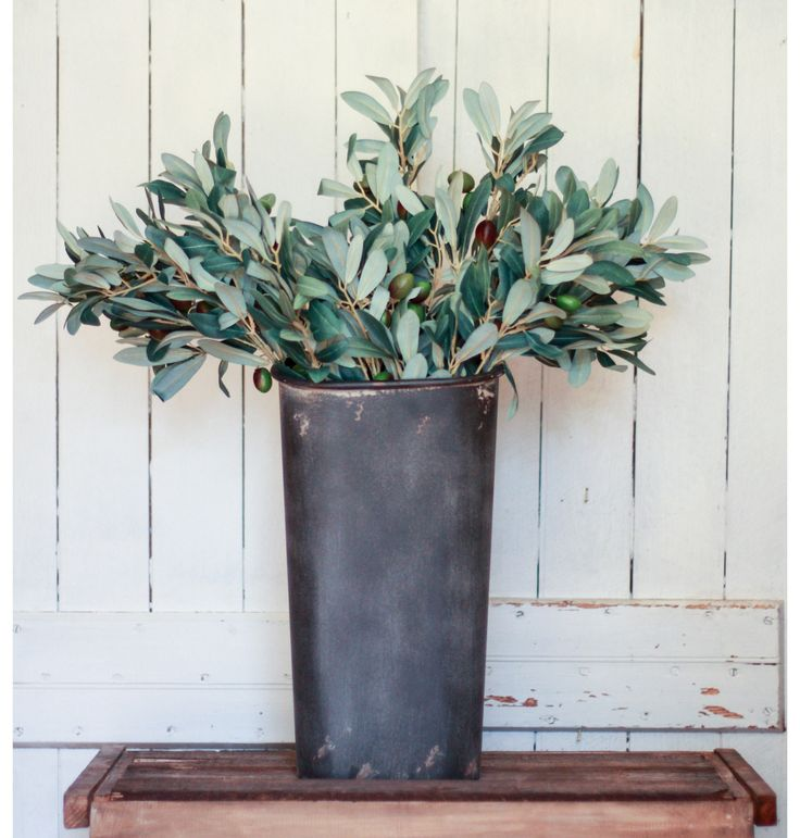 Olive Green Kitchen Decor: 1000+ Ideas About Olive Green Decor On Pinterest