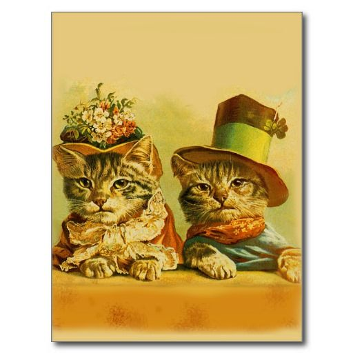 vintage art animals cats post card. Created By be1979