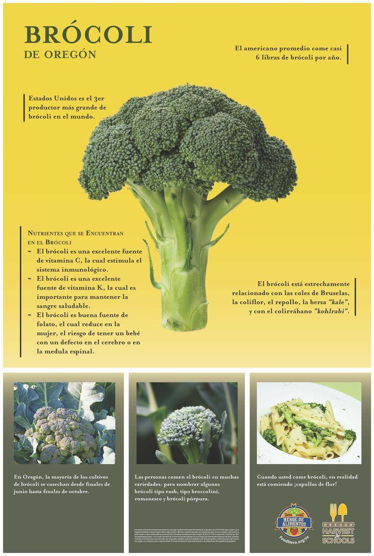 82 Posters Oregon Harvest Ideas School Cafeteria Food Poster School Garden