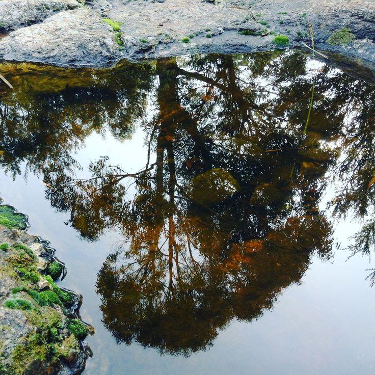 Lenah Valley Creek, Hobart