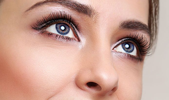 Blog - How to grow the perfect Eyebrows