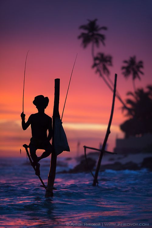 Sri Lanka's Stilt Fisherman, Sri Lanka, Ahangama village ~~ Would be great to see this
