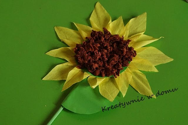 Słonecznik | Kreatywnie w domu