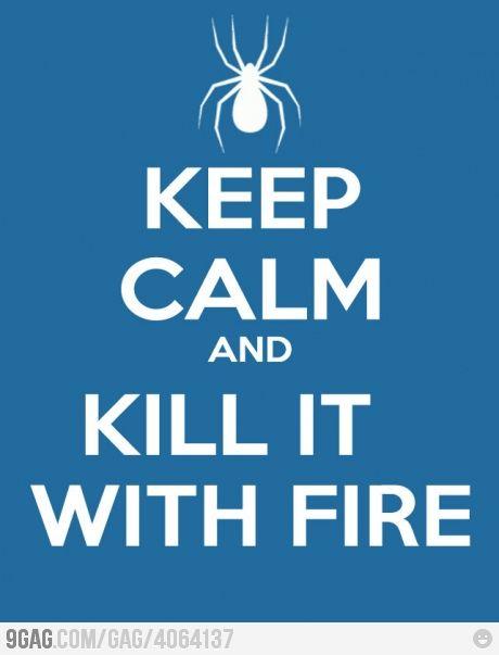 Keep calm, keep calm... Keep calm!!!