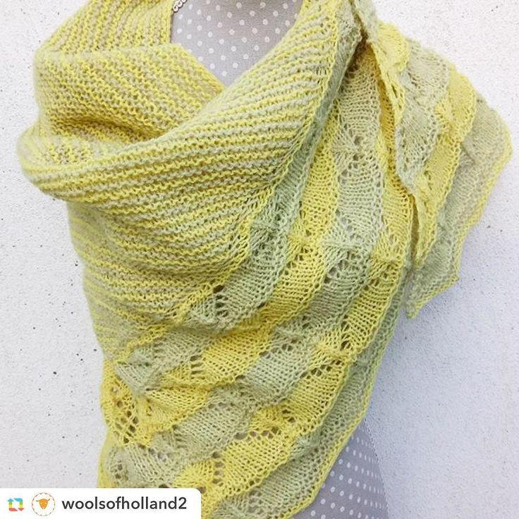 Have you seen this gorgeous version of the Bichrome shawl? #repost ======> @woolsofholland2:Bichrome van LaVischDesigns uitgevoerd in twee kleuren plantaardig geverfde Shetlandwol 2dr van Uilenstad wol en schapen.  Geverfd met kamille (helder geel) en fluitekruid (de andere geel). Het patroon is goed.  Mooi ontwerp! #woolsofholland #woolsofholland2 #lavischdesigns #shetlandwol #shetlandsheep