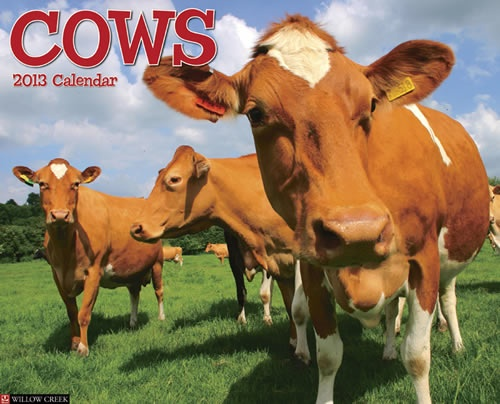 Buy Cows 2013 Calendar online at Megacalendars The cow is of the bovine ilk wrote Ogden Nash One end is moo the other milk Twelve bright photographs these sweetest and gentlest of earth's creatures.  http://www.megacalendars.com/Cows-2013-Calendar-55452_p_13734.html