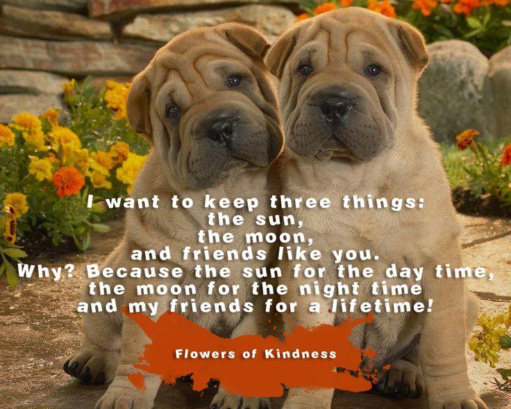 I want to keep three things ::