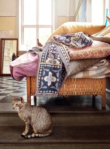 Skolans entré med rutigt stengolv, trappa av kalksten och glasade dubbelsvängdörrar. På de gamla korgsängarna ligger kuddar och filtar från trädgården. Orientaliska katten Tintin, 6 år.